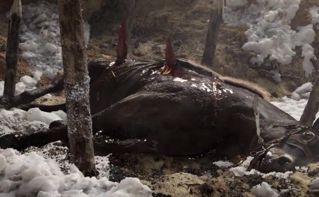 Viking's Horse